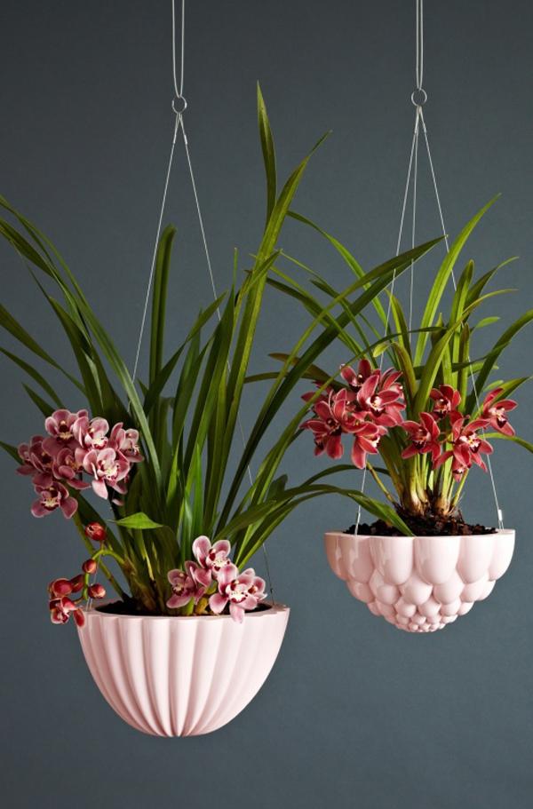 round-jelly-planters-3