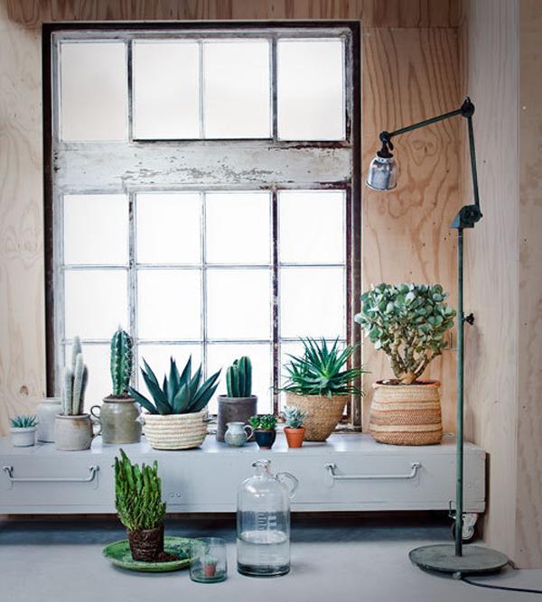 vtspreekuur-groen-in-huis